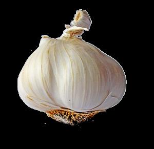 Knoblauch -  Quelle: pixabay.com
